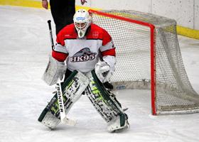 Filet pour cage de hockey